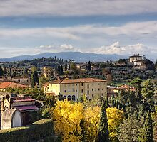 A Tuscan View by Lynne Morris