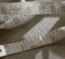 Measurements Anyone by Lynn  Gibbons