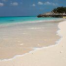 Beach, Rose Island, Bahamas by Shane Pinder