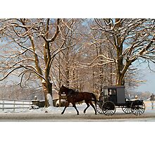 Horse and Buggy on a Wintery Morning Photographic Print