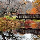 Autumn Bridge by Richard Earl