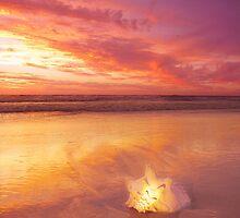 Twilight by CarlyMarie