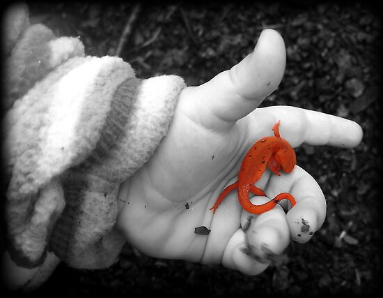 Smallest hand...biggest World by sillyfrog