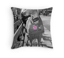 Montgomery aka Monty Throw Pillow