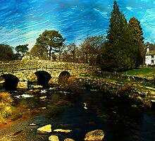 Postbridge, Dartmoor  by buttonpresser