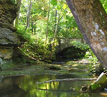 Quiet Waters - East Branch Rocky River by Christine  McClung