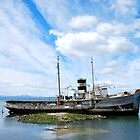 Wreck in Ushuaia harbour by mcreighton