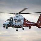 VH-PVG - Police/Ambulance Helicopter by Cecily McCarthy