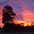 Sunset in South Carolina by Karen L Ramsey