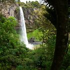 Bridal Veil Falls - New Zealand by Norman Repacholi