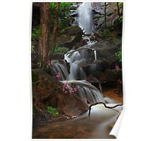 Cascade of the Hyacinth Orchid Poster