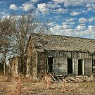 Deserted Farmhouse in Hill County, Texas by Susan Russell
