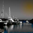 AS THE HARBOR WHARFS by ArtbyDigman
