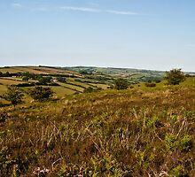 Exmoor, Winsford Hill by Rob Hawkins