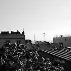 Paris from up high by Mats Janné