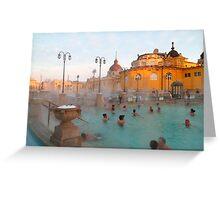 Széchenyi medicinal baths III Greeting Card
