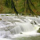 Rapids on Sweet Creek by aussiedi