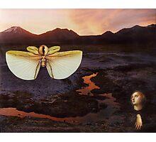 M Blackwell - The Sentinels of Sunset Ridge Photographic Print