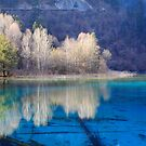 Five Flower Lake, Jiuzhaigou Valley, Sichuan, China by Albert Tsui