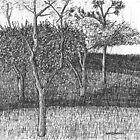 Meadow by W. H. Dietrich