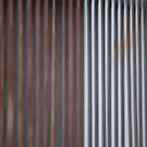 Fence by Lynn Wiles