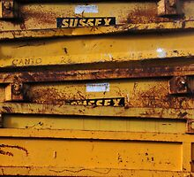 Sunny Sussex Skips by Celia Strainge