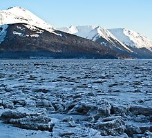 Turnagain Arm Frozen by Bob Moore