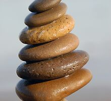 Six Brown Stones by tom j deters