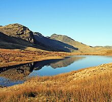 Red Tarn Langdale by Linda Lyon