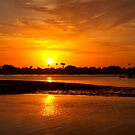 Bright gold sunset by  B. Randi Bailey