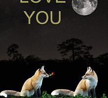 Eftalou Foxes LOVE YOU by Eric Kempson