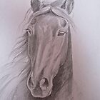 Black Beauty by QuothTheRaven