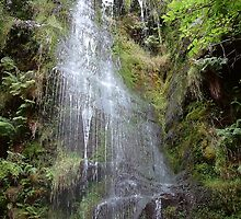 Mallyan Spout by Paul  Green
