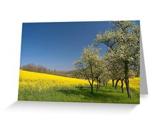Spring Field Greeting Card