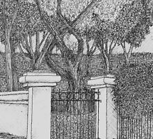 Hedge by W. H. Dietrich