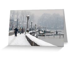 Life after Snowstorm Greeting Card
