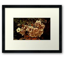 """& there they lay ...so forlorn , forgotten "" Framed Print"