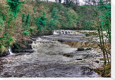 Aysgarth Falls  - Yorkshire Dales by Trevor Kersley