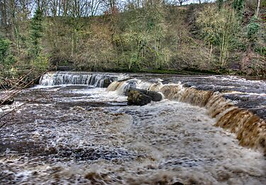 Aysgarth Falls - Wensleydale by Trevor Kersley