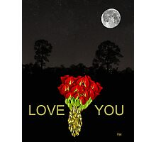 ROSES LOVE  YOU Photographic Print
