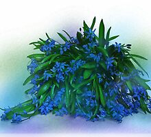 Blue Primroses by VallaV