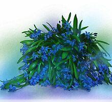 Blue Primroses by VallaV