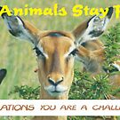 Let animals stay free banner. by Karue