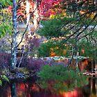Fall Landscape Oak Grove Road by moosewinks