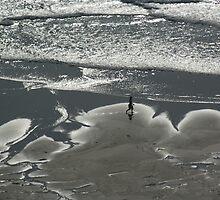 Alone on beach  by Crispel