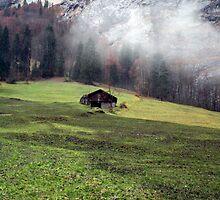 Suisse #6 by Mariya Manzhos