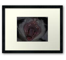 """"""" Say Ahhhhhh """" Framed Print"""