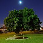 moon TREE by litratista
