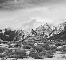 Split Mountain B&W by Kim Barton