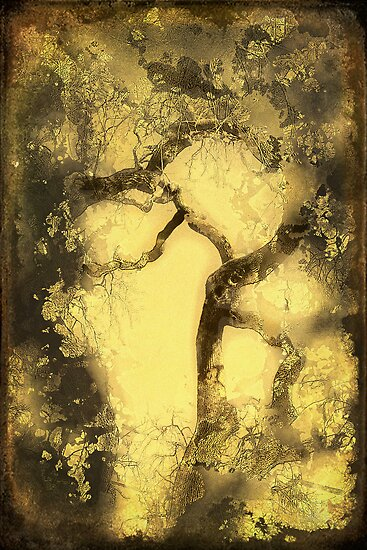 Tree of Life by pat gamwell